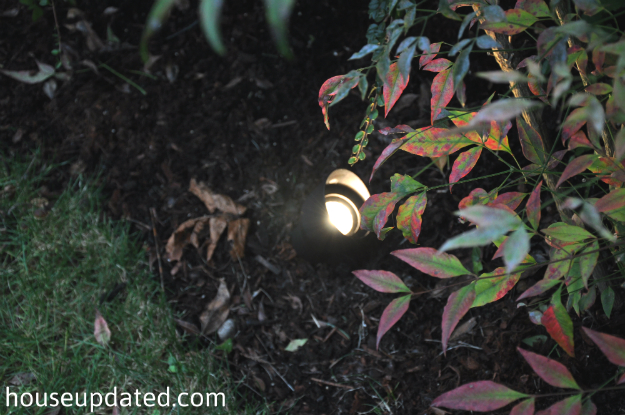 close-up nighttime landscape lighting