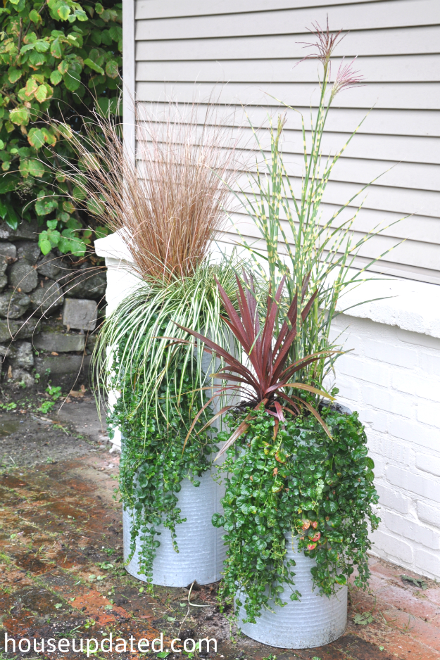 industrial planters with tall grasses