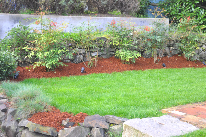 mulched and mowed