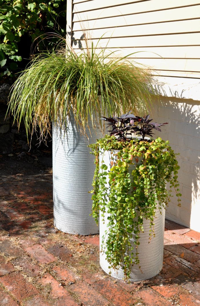 industrial planters with fall plantings